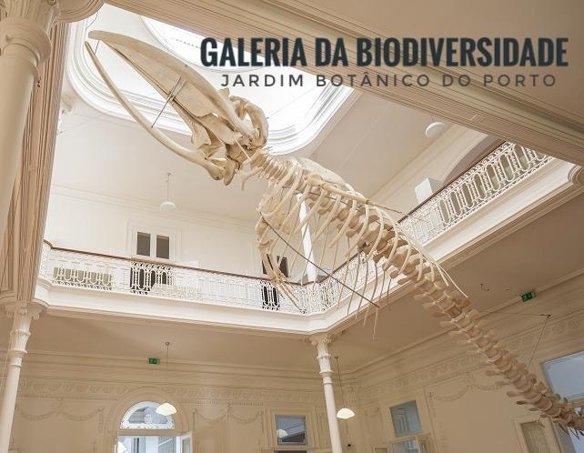Galeria da Biodiversidade