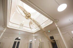 Galeria da Biodiversidade – Centro Ciência Viva