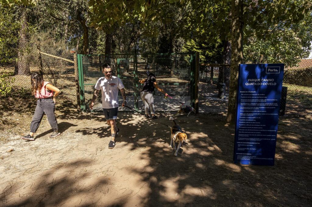 parque canino Porto quinta do covelo