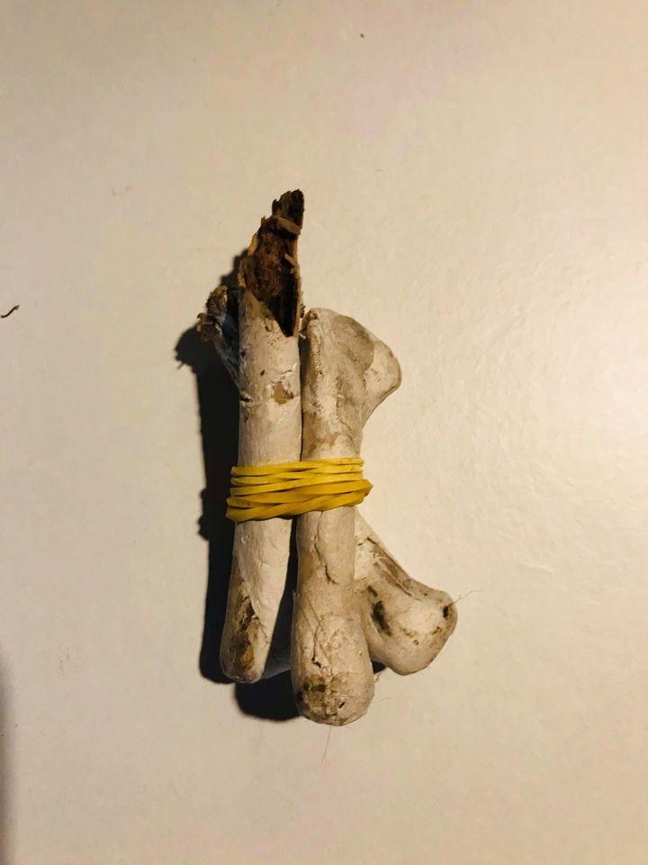 """No osso"""" de Pedro Ruiz Espaço MIRA"""